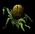 brainharvest